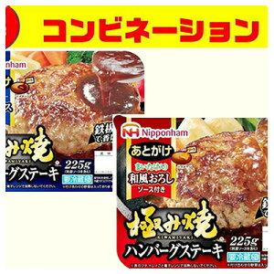 【ふるさと納税】極み焼きハンバーグ和風おろしソース&デミグラスソースセット 【惣菜・お肉・ハンバーグ】