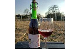 【ふるさと納税】牛久醸造ワイン スパークリング 赤 1本 【08219-0008】