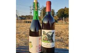 【ふるさと納税】牛久醸造ワイン 茨城県産葡萄 2本セット 【08219-0010】