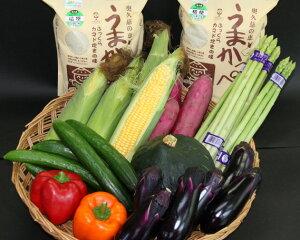 【ふるさと納税】No.014 奥久慈の恵「うまかっぺ米」と季節の野菜セット / お米 こしひかり コシヒカリ 安全 農産物