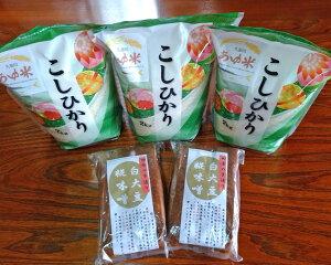 【ふるさと納税】No.174 常陸大宮市産のお米と手造り味噌セット / こしひかり コシヒカリ みそ 白大豆味噌 生味噌 無添加
