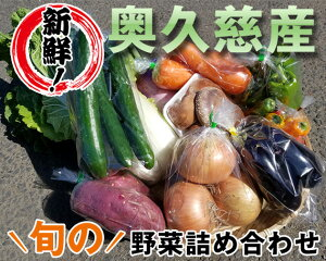 【ふるさと納税】No.214 【新鮮!】奥久慈産 旬の野菜詰め合わせ