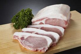 【ふるさと納税】筑西市産銘柄豚キングポーク(焼き肉用)
