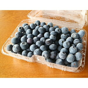 【ふるさと納税】横田さん家の冷凍完熟ブルーベリー 4パック【1085839】