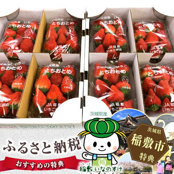 【ふるさと納税】甘味と糖度が抜群!いちご(とちおとめ) 茨城県産