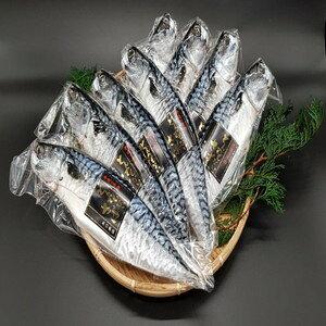 【ふるさと納税】【3ヶ月定期便】 とんでもない鯖(鯖文化干し8枚×3回) 魚 さば サバ 干物 神栖市 茨城県 送料無料