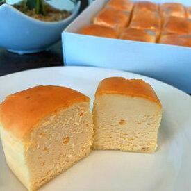 【ふるさと納税】大人気!!ひとくちチーズケーキ(18個入)