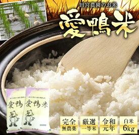 【ふるさと納税】アイガモと一緒に育てたお米「愛鴨米・玄米」3kg×2