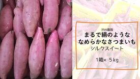 【ふるさと納税】まるで絹のようななめらかなさつまいもシルクスイート5kg 焼き芋 やきいも お芋 おいも 国産 送料無料 さつま芋 特産 名産品 行方市 茨城県 芋 サツマイモ スイートポテト 干し芋 ほしいも スイーツ
