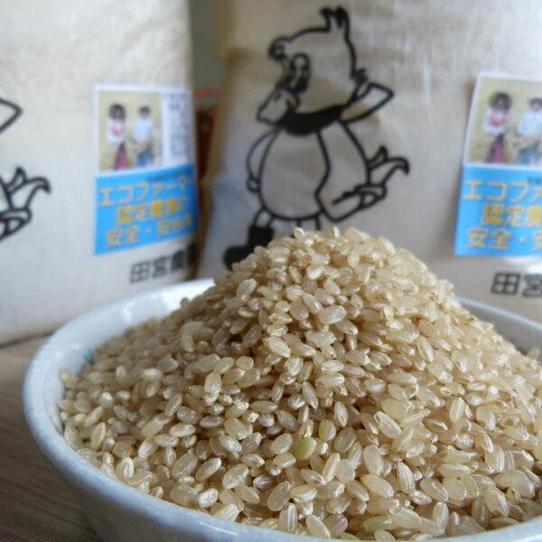 【ふるさと納税】合鴨農法完全無農薬米「愛鴨米」〈玄米〉3kg×2
