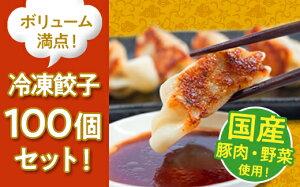 【ふるさと納税】【コロナ支援】国産豚肉!国産野菜使用!ボリューム満点!冷凍餃子100個セット