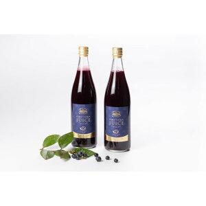 【ふるさと納税】9−L 果汁50%ブルーベリー飲料2本セット