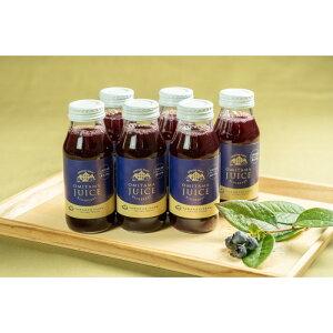 【ふるさと納税】9−O 果汁35%ブルーベリー飲料24本