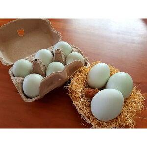 【ふるさと納税】37−D 平飼い幸せの青いアローカナの卵(24個)