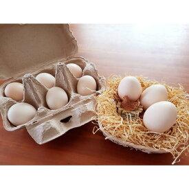 【ふるさと納税】37-C 平飼い極上のうこっけいの卵(24個×定期便12回)