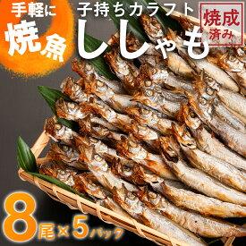 【ふるさと納税】AC002_手軽に焼魚 ししゃも(カラフトししゃも焼成済み)
