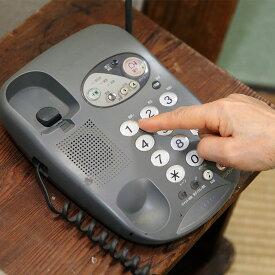 【ふるさと納税】50-09郵便局のみまもりでんわサービス(携帯電話コース12か月)