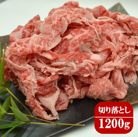 【ふるさと納税】茨城県産牛肉切り落とし1200g