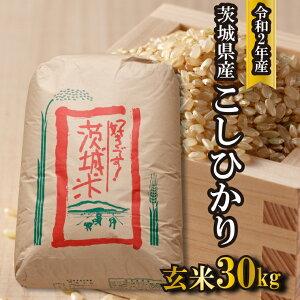 【ふるさと納税】令和2年産 境町のこだわり玄米 こしひかり30kg |米 お米 コシヒカリ 茨城県産 新米予約 2020年産