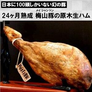 【ふるさと納税】塚原牧場の幻の豚「梅山豚」原木生ハム1本(数量限定)
