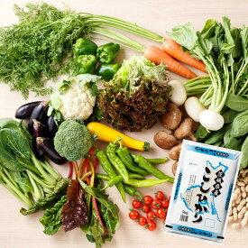 【ふるさと納税】新鮮野菜と茨城県産コシヒカリ5kgセット |米 お米 白米 国産 茨城県産 道の駅