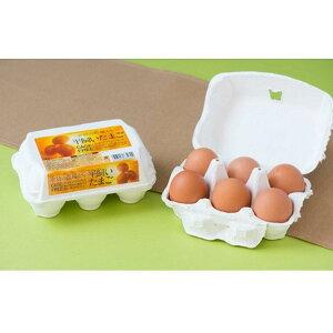 【ふるさと納税】こだわりの平飼いたまご30個(6個×5パック) 卵 たまご 鶏卵 茨城県産 国産