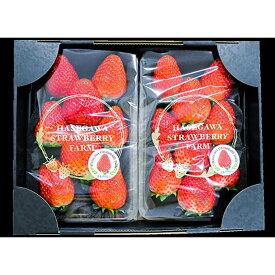 【ふるさと納税】「上品な味わい 長谷川いちご園スカイベリー 計2パック」