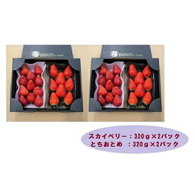 【ふるさと納税】甘くて大きい!長谷川いちご園 スカイベリー&とちおとめセット 計4パック
