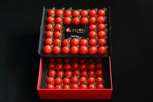 【ふるさと納税】】ミニトマト『こくパリッ®プレミアム』78粒(約620g)/1セット