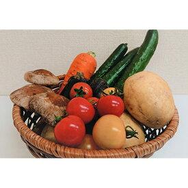 【ふるさと納税】季節の野菜お試しセット(全5〜7品)【1118274】