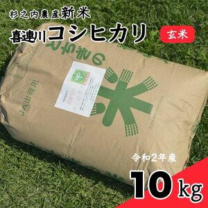 【ふるさと納税】新米 喜連川コシヒカリ 杉之内農産 10Kg玄米 令和2年産