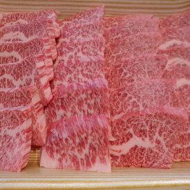 【ふるさと納税】A5とちぎ和牛特撰カルビ焼肉用500g