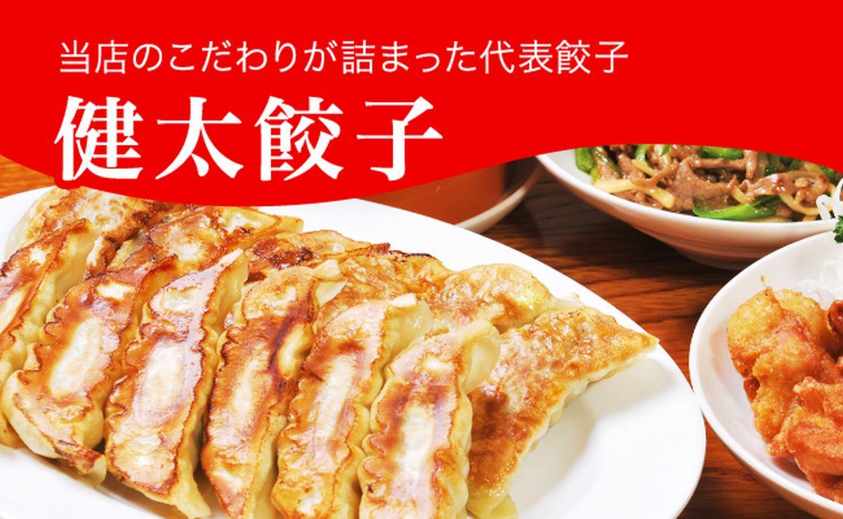 【ふるさと納税】健太餃子 960g(48個)
