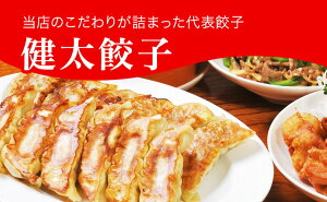 【ふるさと納税】「宇都宮餃子館」健太餃子 960g(48個)