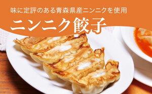 【ふるさと納税】「宇都宮餃子館」ニンニク餃子 960g(48個)