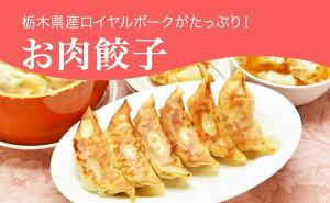 【ふるさと納税】「宇都宮餃子館」お肉餃子 960g(48個)