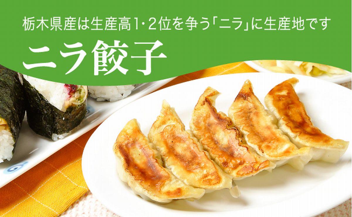 【ふるさと納税】ニラ餃子 960g(48個)