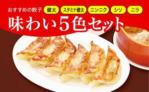 【ふるさと納税】「宇都宮餃子館」健太餃子味わい5色セット(餃子5種) 800g