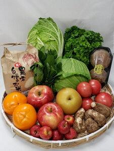 【ふるさと納税】さくら市産の農産物詰め合わせDX
