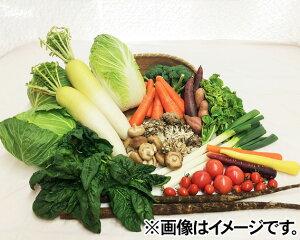 【ふるさと納税】No.028 下野市産 季節の野菜詰め合わせ / 季節野菜 新鮮 詰合せ 栃木県 特産品