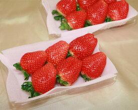 【ふるさと納税】No.060 栃木県下野市産 スカイベリー(4パック) / いちご 苺 イチゴ 果物 栃木県