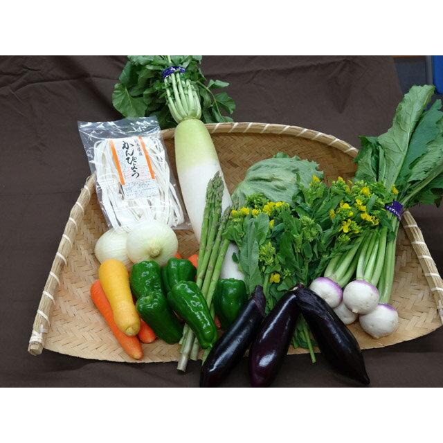 【ふるさと納税】緑のセットA〜緑の大地のめぐみ〜(野菜の詰め合わせ)