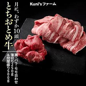 【ふるさと納税】とちおとめ牛 肩・バラ・モモ合わせ薄切り250g&問屋盛り500gセット 牛肉 ボリューム