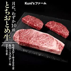 【ふるさと納税】とちおとめ牛 モモステーキ300g&ロースステーキ250gセット 牛肉 ステーキ