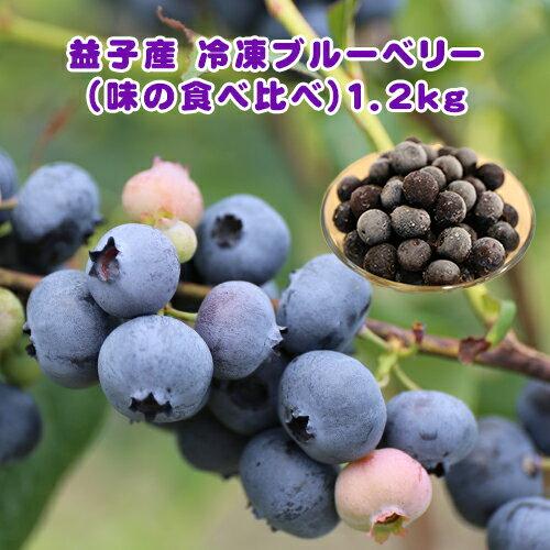 【ふるさと納税】益子町産 冷凍ブルーベリー(味の食べ比べ)1.2kg ◆