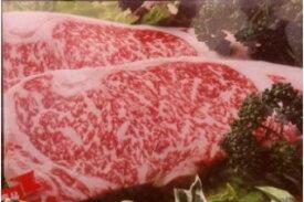 【ふるさと納税】B-19 群馬県上州牛サーロインステーキ用 250g×2枚