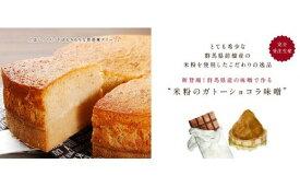 【ふるさと納税】I-27 モンコナモンの米粉のガトーショコラ 味噌 (ホール型)【期間限定値下げ】