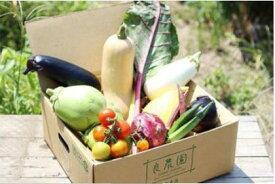 【ふるさと納税】A-07 良農園の旬野菜ギフト【※限定50セット】