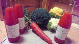 【ふるさと納税】B-16 無農薬で育った良農園の野菜とにんじんジュースのセット