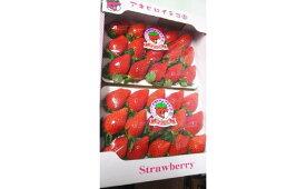 【ふるさと納税】R-20 やよいひめDX(群馬県オリジナル品種のイチゴ)約400g ×2パック(箱入り)